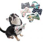 犬用ネクタイ